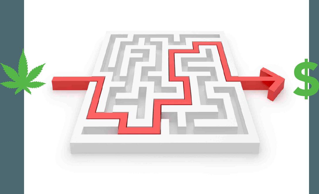 Marketing Maze of Cannabis